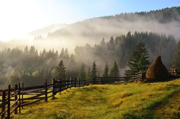 Ранковий туман у Карпатах