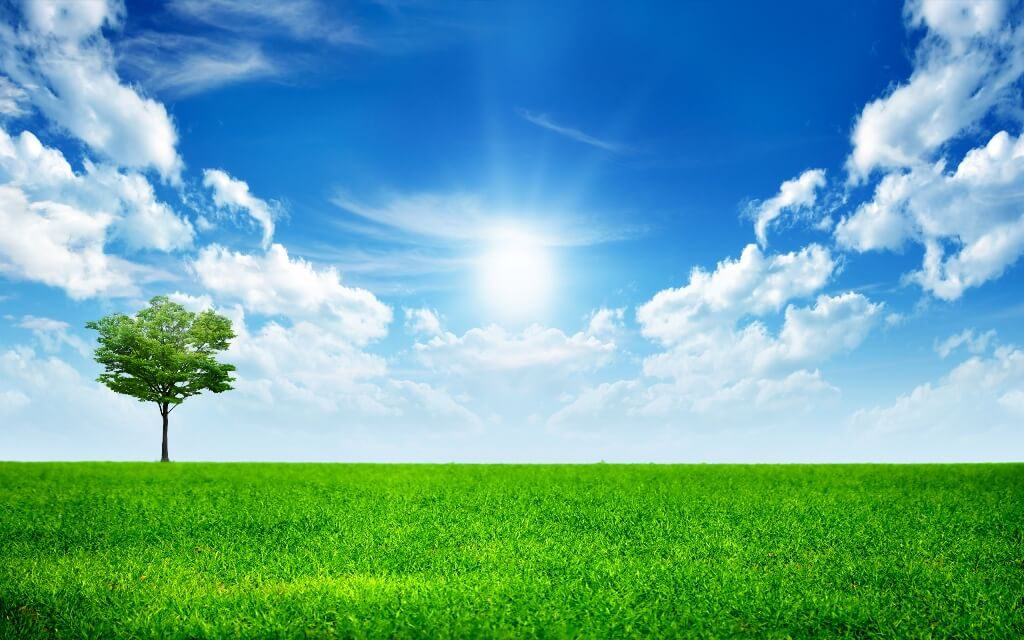 Вплив навколишнього середовища на самопочуття людини