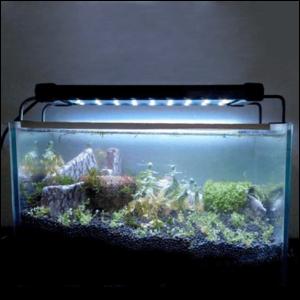 Освітлення для акваріуму